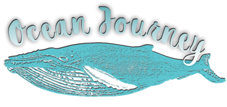 Ocean Odyssey Knysna Online Shop