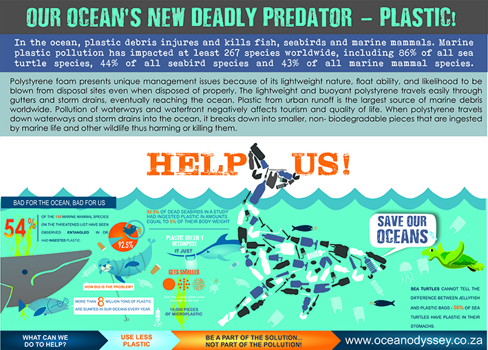 Plastic pollution in our oceans.